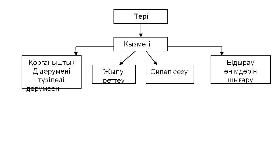 ter-2